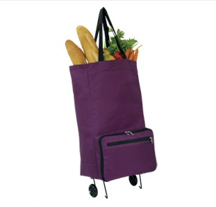 Cart Smart Rolling Shopping Bag | Neatitems | Free shipping